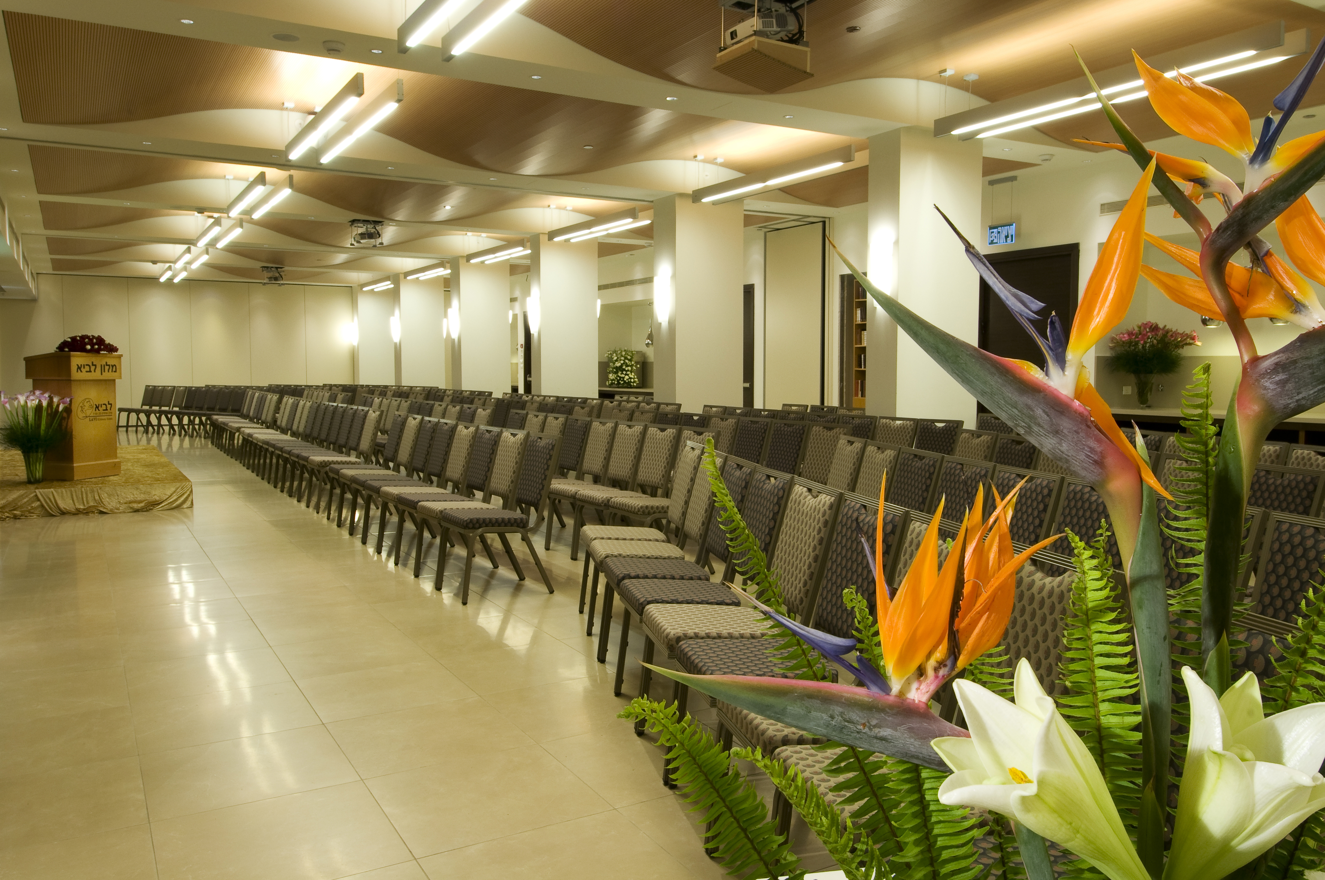 Kibbutz Lavi Hotel - Convention Hall