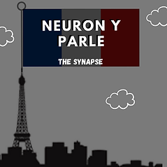 Neuron-y-Parle Cover Art 2 (3).png