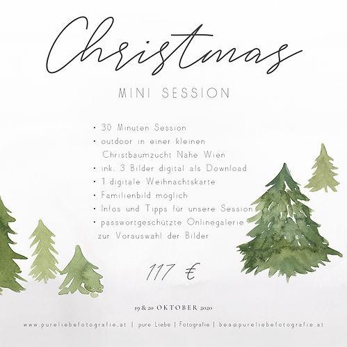 Christmasmini Vorlage Infos.jpg