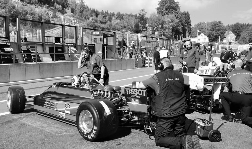 F1 d.JPG
