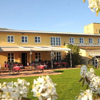 Weingut & Restaurante Heitlinger