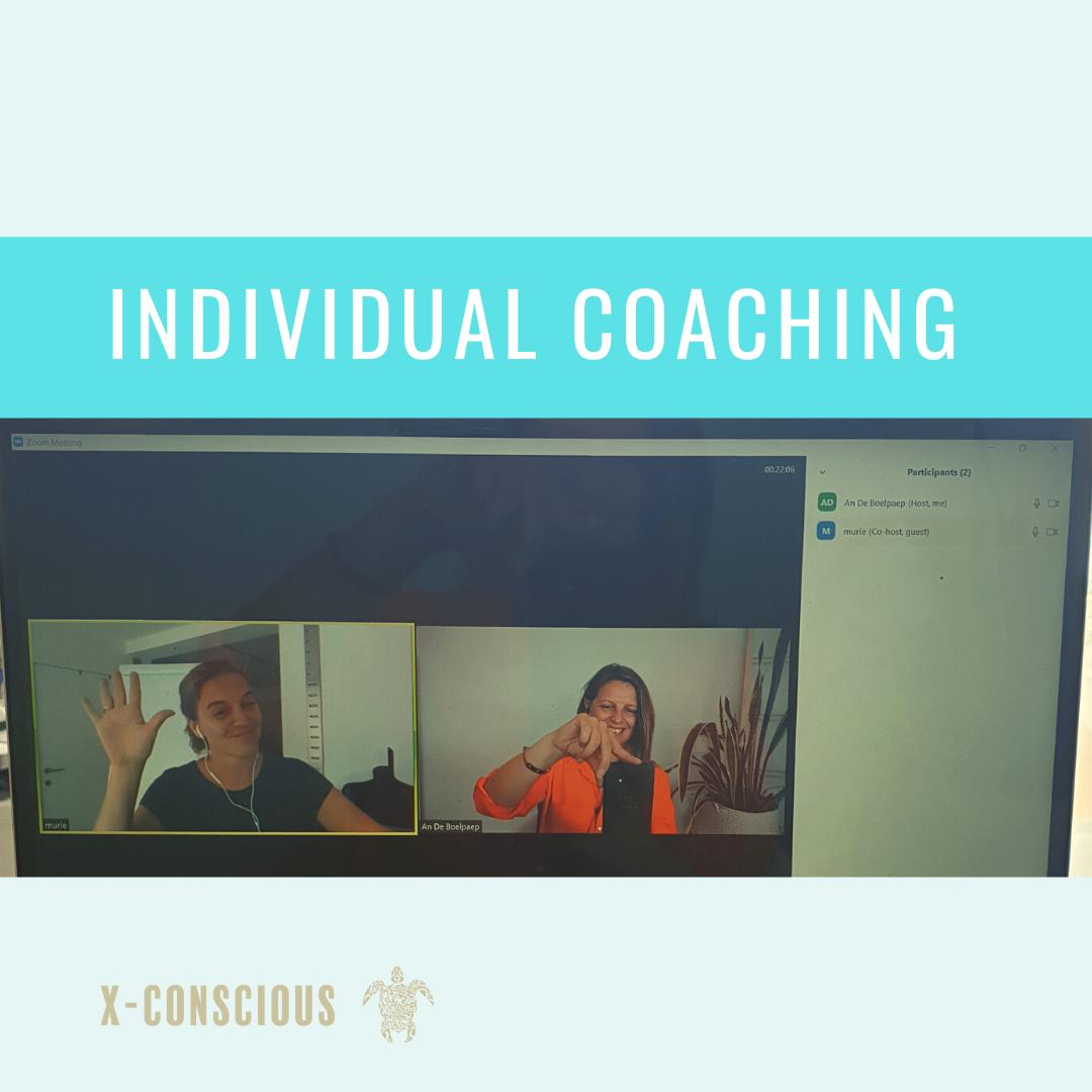 Individual coaching: Impactfull online