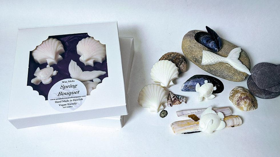 Sandy Shores Signature Collection Box