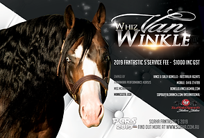 Whiz Van Winkle
