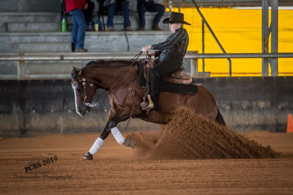 Checkout Hollywood ridden by Kathleen Murphy