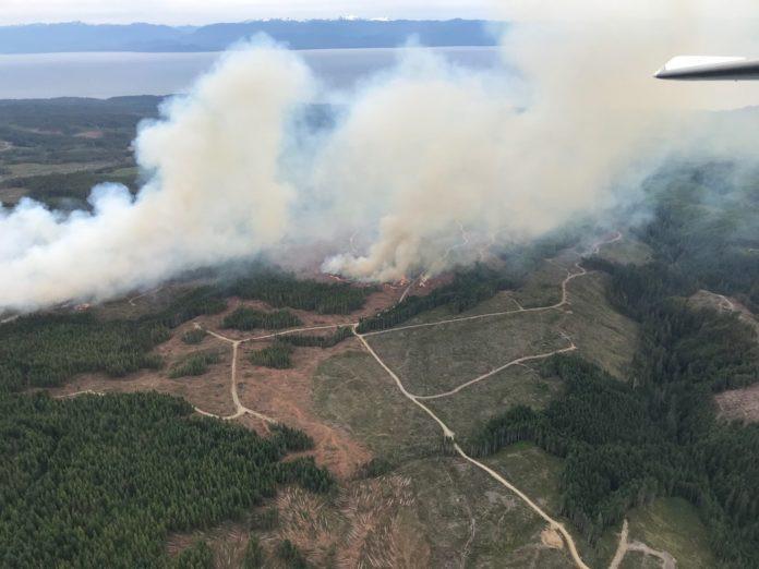 BC省温哥华岛山火   图片来源:BC Wildfire Center