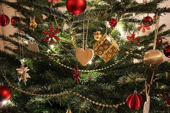 温哥华岛圣诞树农场大盘点