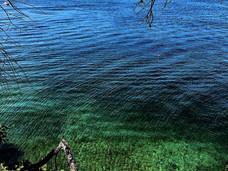 温哥华岛旅游系列之——纳奈莫周边小岛游