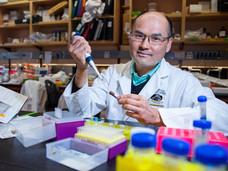 维多利亚大学研究人员获巨额资金扶持,用于研发攻克癌症的治疗方案
