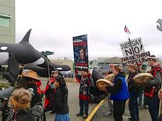 为什么BC省及温哥华岛近海有鲸鱼可以看?跟跨山油管有什么关联?