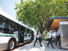 维多利亚市中小学生公交车免费计划遭推迟
