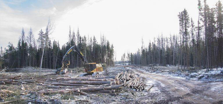 """温哥华岛""""鬼镇""""——三代经营,伐木场关闭后谁为荒芜买单"""
