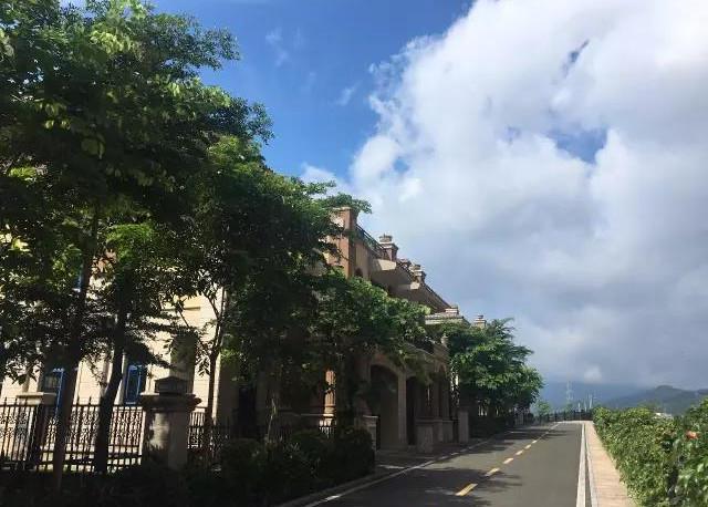 WeChat Image_20190320201155.jpg