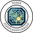Norsk_Sykepleierforbund_Sunn_Ledelse_Sax