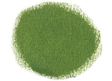 Olive 15g