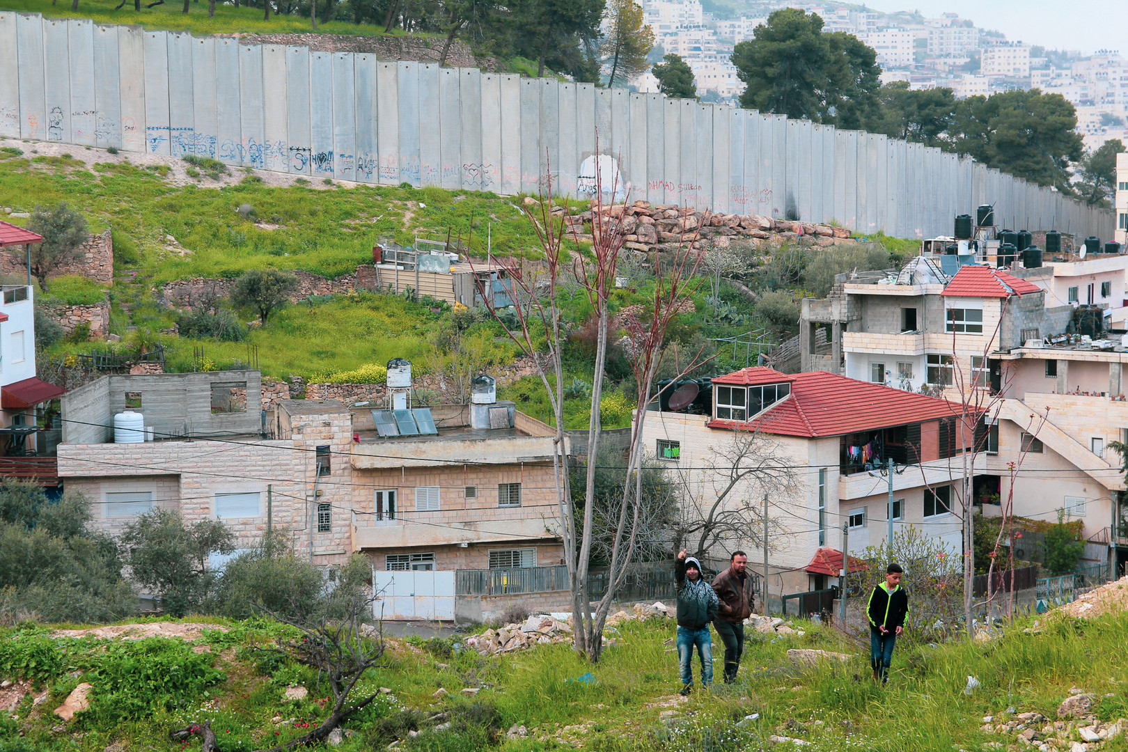 Sheperds | Palestine