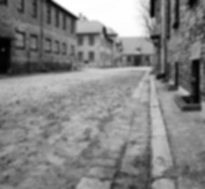Auschwitz buildings.