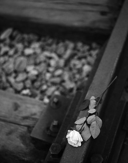 Railroad track inside Birkenau.