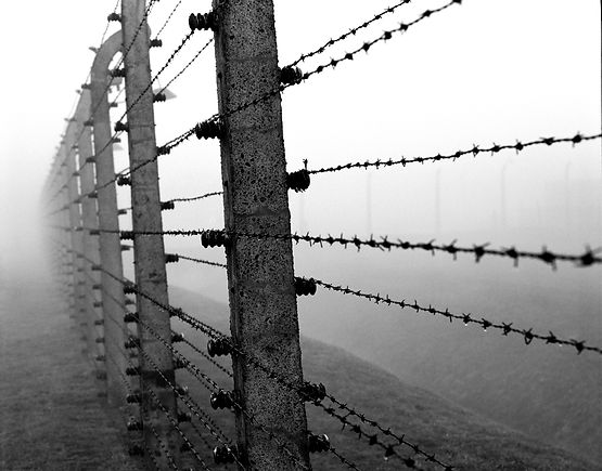 Internal fence, Birkenau.