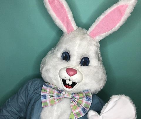 Easter Bunny Virtual Meet & Greet