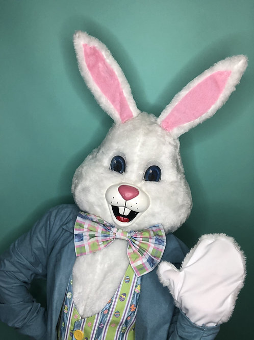 Easter Bunny Virtual Meet & Greet