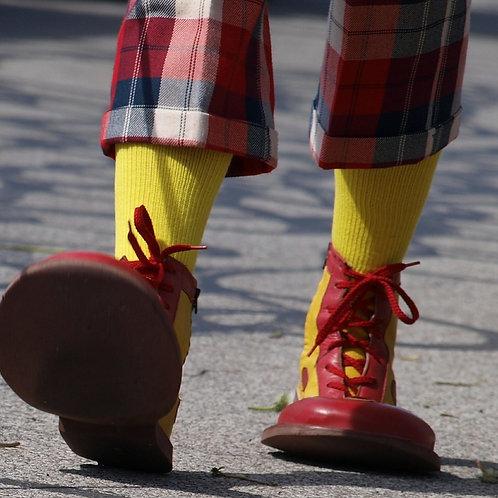 20-Min Clown Shoe Mini Session