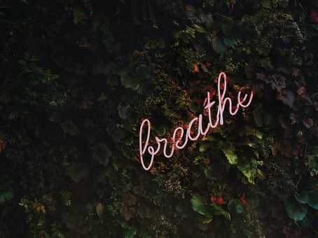 Self-care Is The Most Important Thing You Need