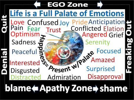 Palate of Emotions: How to be Present