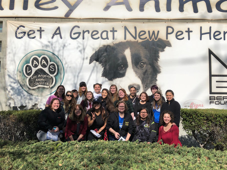 LA Animal Shelters Volunteer Orientation with Kat Barrell.