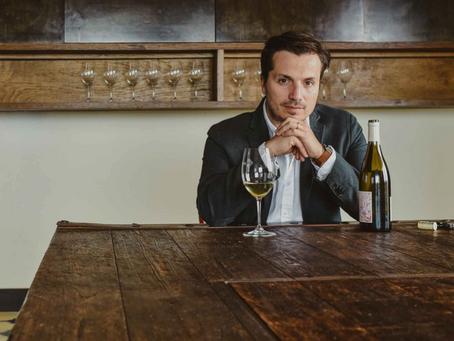 Provino: Transformando el Vino en Cultura.