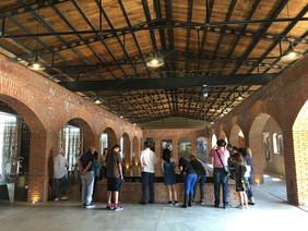 Visita Sala de fermentación Viñedos San Lucas