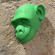 Tête de singe verte