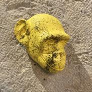 Tête de singe jaune marbrée de noir