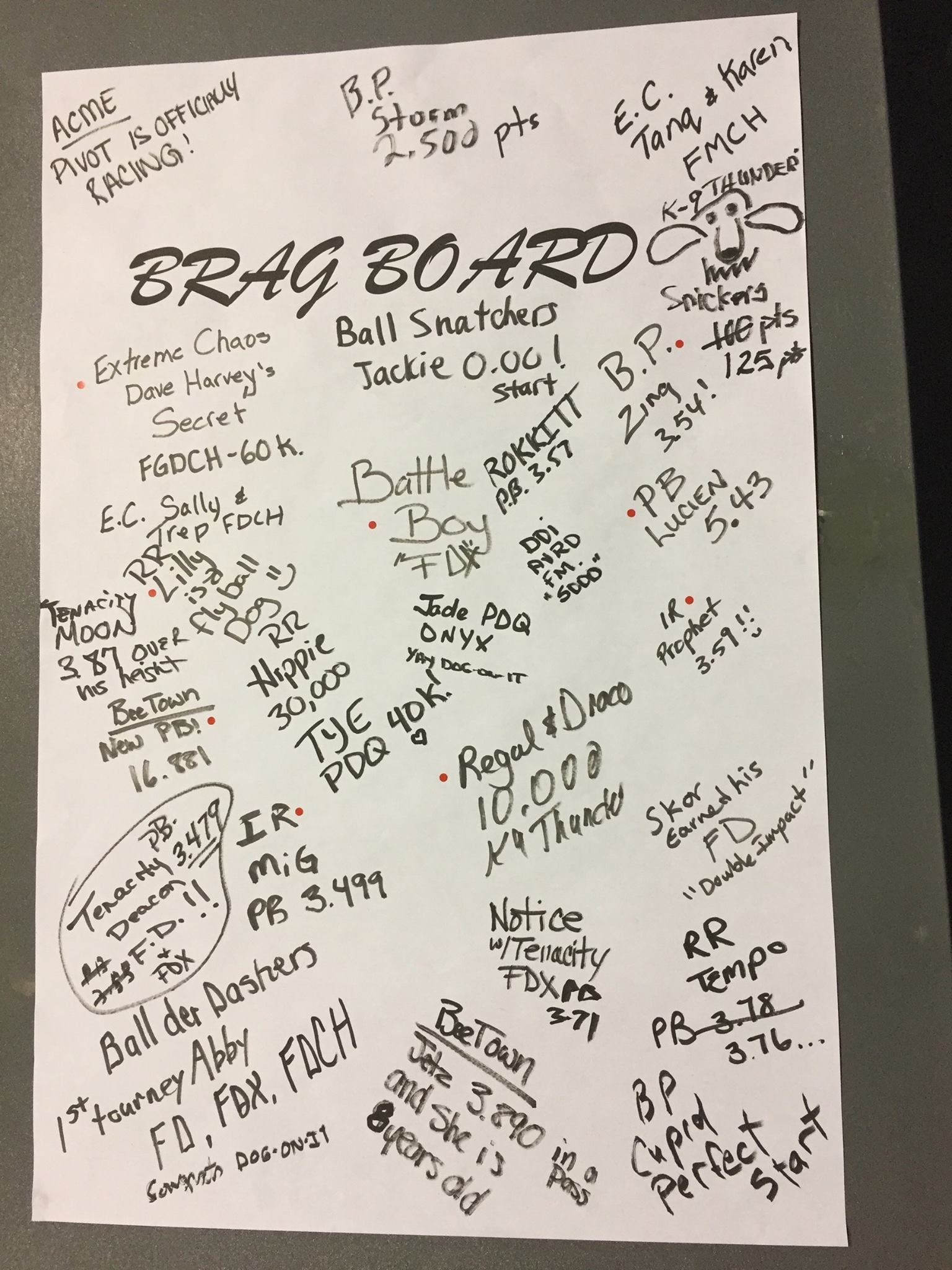 June 2017 Brag Board