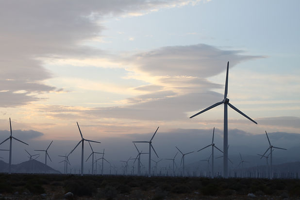 A field of windmills spin in front of a