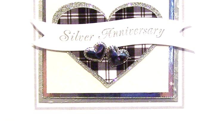 B8 - silver 25th anniversary