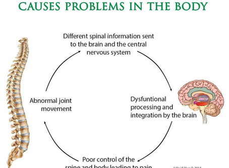 How can chiropractic stimulate my nervous system to have better tone?