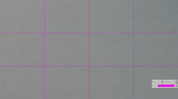 Cross Line - Magenta