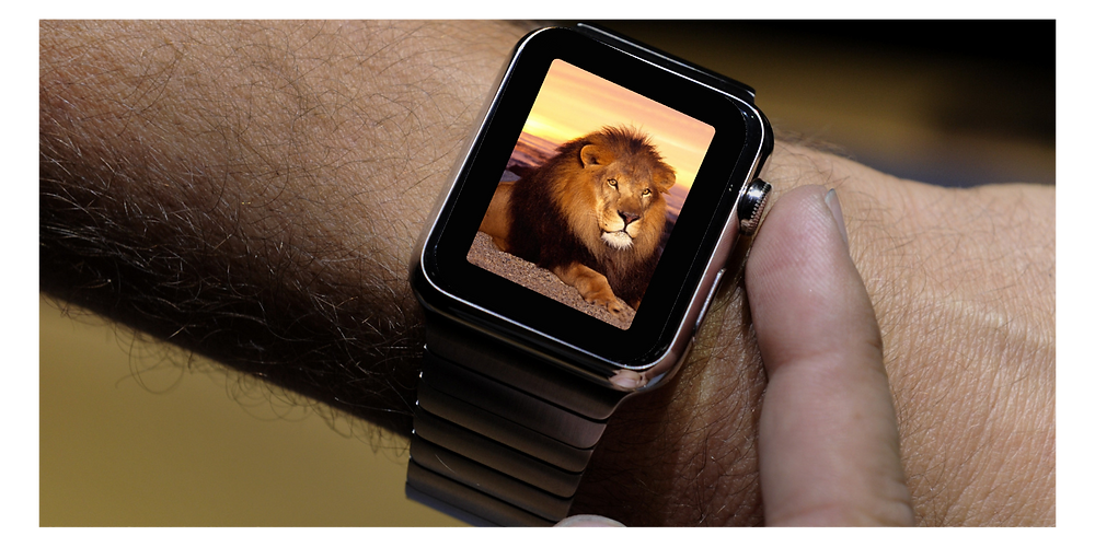 Apple watch with lion on screen