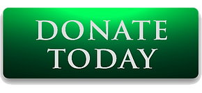 DONATE-TODAY-Button - GREEN.png