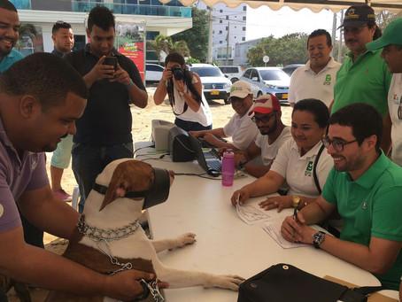 Animalatón II para registrar caninos peligrosos