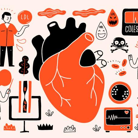 Colesterol: vilão ou mocinho da saúde?