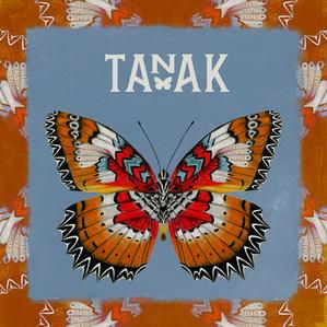 TANAK, rock, folk, chanson française
