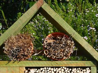 ¿Por qué instalar un hotel de insectos beneficiosos en tu huerto?