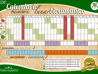 Calendario Lunar de Noviembre