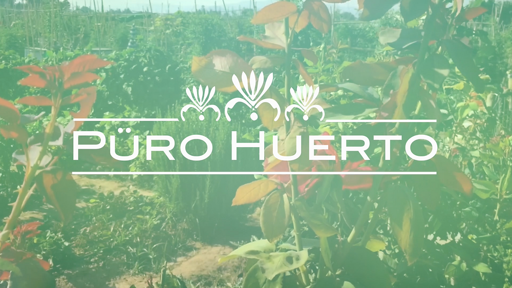 Puro Huerto