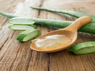 Como extraer y conservar el gel Del Aloe Vera