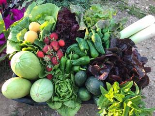 ¿Las frutas y verduras congeladas pierden beneficios?