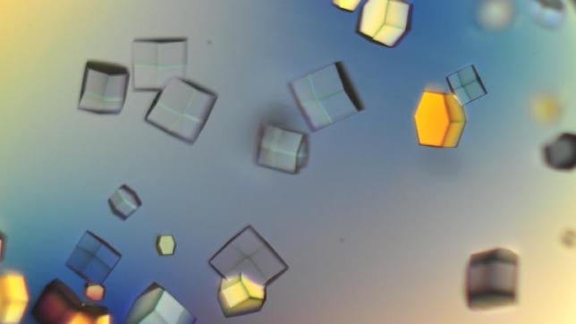Protein Crystallization