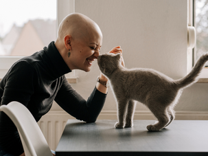 Four ways to respect your cat